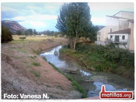 Río Henares limpio