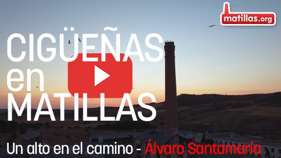 Alvaro Santamaría - Cigüeñas en Matillas. Un alto en el camino